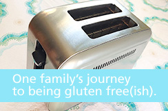 Feature_GlutenFree_Toaster